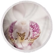 Close Up Shoot Of A Beautiful Orchid Blossom Round Beach Towel