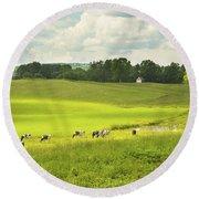 Cows Grazing On Grass In Farm Field Summer Maine Round Beach Towel