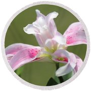 Double Oriental Lily Named Magic Star Round Beach Towel