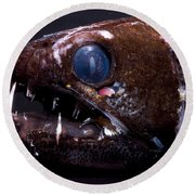Dragonfish Round Beach Towel
