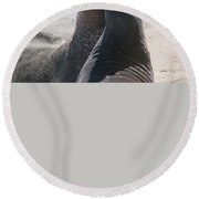 Elephant Seal Colony On Big Sur  Round Beach Towel