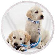 Goldidor Retriever Puppies Round Beach Towel by Jane Burton