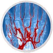 Hand Arteriogram Round Beach Towel