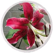 Orienpet Lily Named Scarlet Delight Round Beach Towel