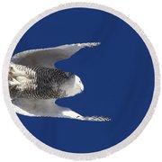 Snowy Owl In Flight Round Beach Towel