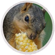 Squirrel Eating Sweet Corn Round Beach Towel