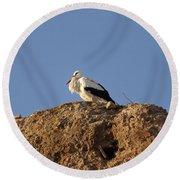 Storks In Marrakech Round Beach Towel