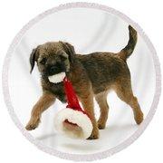 Border Terrier Puppy Round Beach Towel