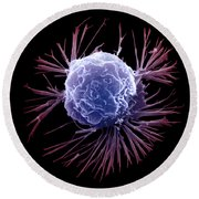 Breast Cancer Cell Round Beach Towel