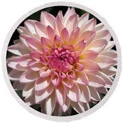 Dahlia Named Valley Porcupine Round Beach Towel