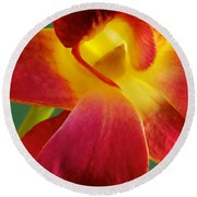 Dendribium Malone Or Hope Orchid Flower Round Beach Towel