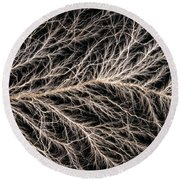 Electrical Discharge Lichtenberg Figure Round Beach Towel by Ted Kinsman