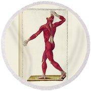 Historical Anatomical Illustration Round Beach Towel