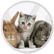 Kitten And Rabbits Round Beach Towel