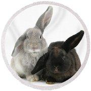 Two Rabbits Round Beach Towel
