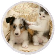 Kitten And Pup Round Beach Towel