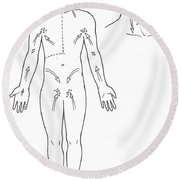 Direction Of Lymph Flow Round Beach Towel