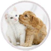Kitten And Puppy Round Beach Towel