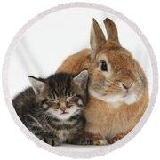 Rabbit And Kitten Round Beach Towel