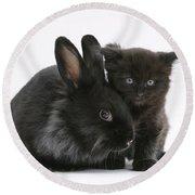 Kitten And Rabbit Round Beach Towel