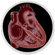 Illustration Of Heart Anatomy Round Beach Towel
