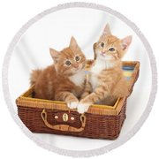 Kittens Round Beach Towel