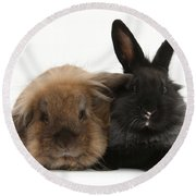 Rabbits Round Beach Towel
