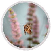 Honey Bee In Flight Round Beach Towel