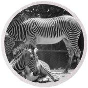 Zebras In Black And White Round Beach Towel