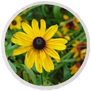A Beautiful Close Up Of A Sunflower Round Beach Towel