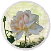 A Beautiful White And Light Pink Rose Along With A Bud Round Beach Towel