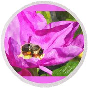 A Bee In A Rose Brpwc Round Beach Towel