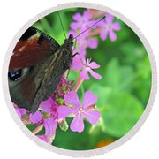 A Butterfly On The Pink Flower 2 Round Beach Towel