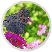 A Butterfly On The Pink Flower Round Beach Towel