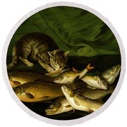 A Cat With Trout Perch And Carp On A Ledge Round Beach Towel by Stephen Elmer