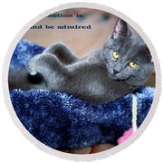 A Cats Function Round Beach Towel
