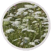 A Field Of Queen Annes Lace Round Beach Towel