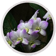 A Flight Of Orchids Round Beach Towel