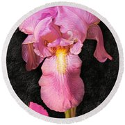 A Flora Is Natures Painting Round Beach Towel