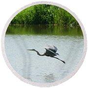A Great Blue Heron Landing Round Beach Towel