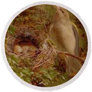 A Greenfinch At Its Nest Round Beach Towel