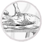 A Handbook Of Morbid Anatomy Round Beach Towel