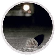 A Hedgehog Round Beach Towel