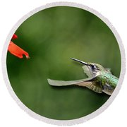A Hummingbird With Dimension Round Beach Towel