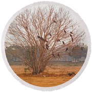A Leafless Tree That Is Home To A Large Number Of Big Birds In The Middle Of A Ground Round Beach Towel