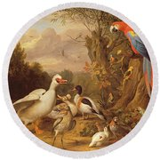 A Macaw - Ducks - Parrots And Other Birds In A Landscape Round Beach Towel