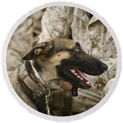 A Military Working Dog Sits At The Feet Round Beach Towel by Stocktrek Images