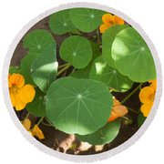 A Mix Of Orange Flowers And Round Green Leaves With Sun And Shadow Round Beach Towel