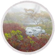 A Natural Garden At Dolly Sods Wilderness Area Round Beach Towel