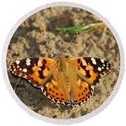 A Painted Lady Looking For Sex 8619 3369 Round Beach Towel